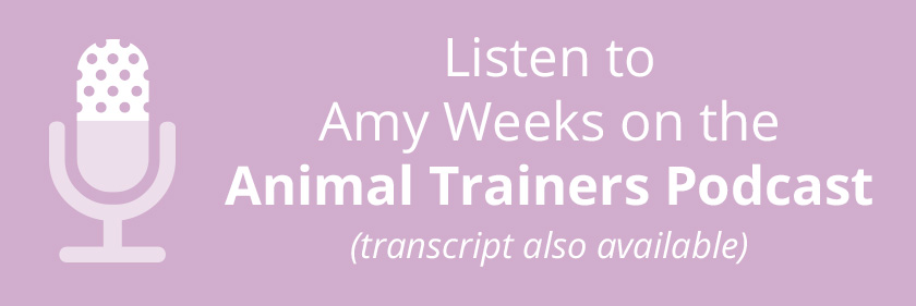 Amy Weeks Podcast